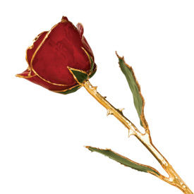 Redrosel